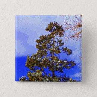 Botón del pino del invierno