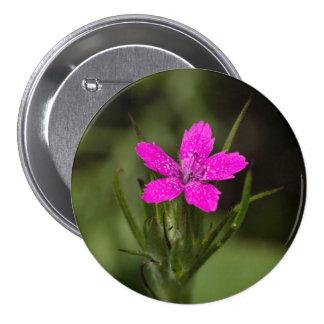 Botón floral del Wildflower rosado de Deptford