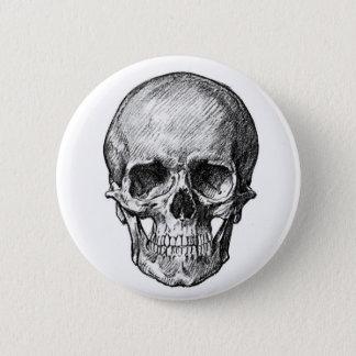 Botón humano del cráneo