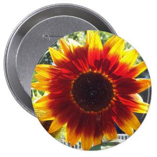 Botón rojo y amarillo vibrante de la foto del