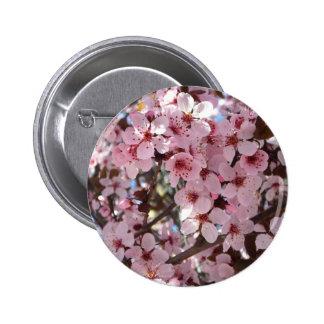 Botón rosado de los flores