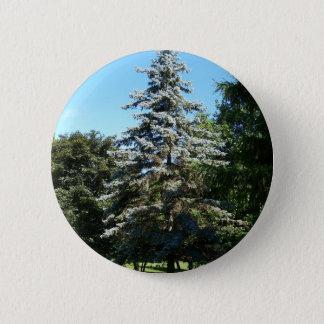 Botón Spruce azul