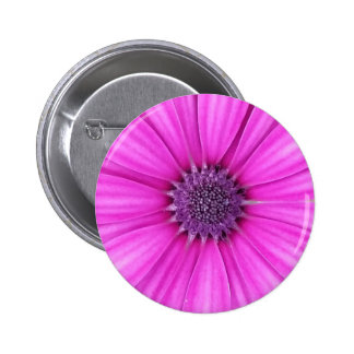 Botón violeta de la flor