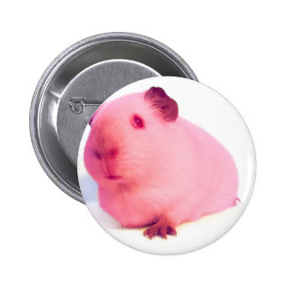 Botones rosados del conejillo de Indias Chapa Redonda 5 Cm