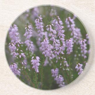 Brezo común (Calluna vulgaris) Posavasos