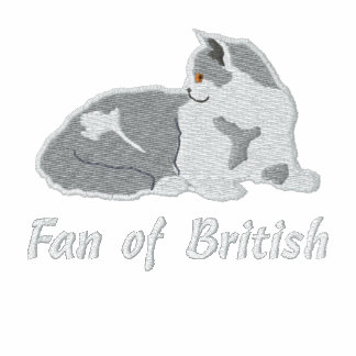 British shorthair lilac and white