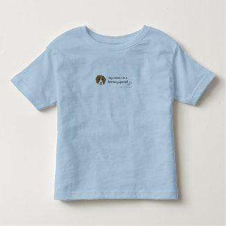 BrittanySpanielSister Camisetas
