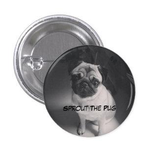 Brote blanco y negro en un botón