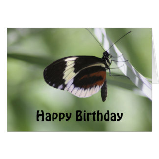 Brown negro y mariposa blanca tarjeta de felicitación