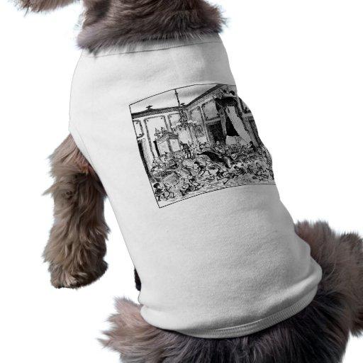 Brownie en la cama de la Casa Blanca del estado Camiseta De Perro