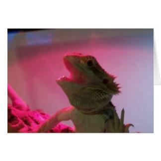 Bubba el dragón barbudo felicitacion