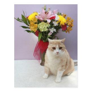 Bubba por las flores postal
