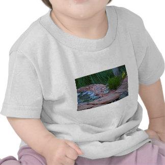 Buda meditating por la corriente camisetas