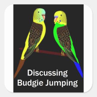 Budgies que discute el salto de Budgie Pegatina Cuadrada