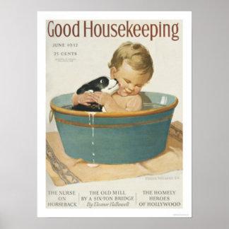 Buena economía doméstica póster