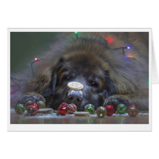 Buena tarjeta de Navidad de Leonberger