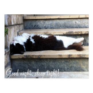 ¡Buenas noches, sueño firmemente! Postal