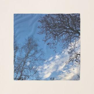 Bufanda de la silueta del árbol del cielo azul de
