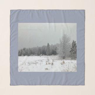 Bufanda del paisaje del invierno de Michigan