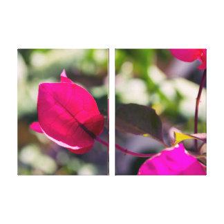 Bugambilia en primavera | Fotografia a la venta Lienzo