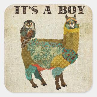 """Búho del trullo de la alpaca del oro """"su pegatina"""