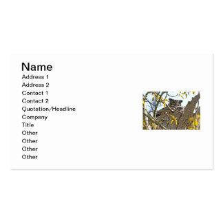 Búho y bebé de la madre en jerarquía tarjeta de visita