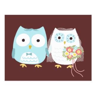 Búhos que casan la novia y al novio postales