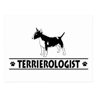 Bull terrier miniatura chistoso postal