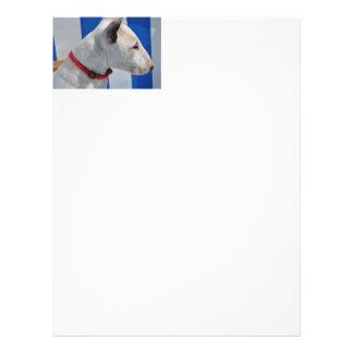 bull-terrier-.png folleto 21,6 x 28 cm