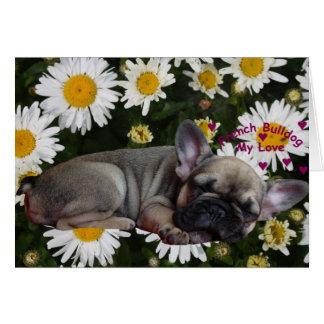 Bulldog francés postales Faltkarte Tarjeton