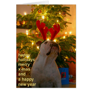 Bulldog - Merry Xmas Tarjeta