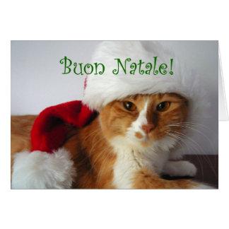 Buon Natale - gato que lleva el gorra de Santa Tarjeta De Felicitación