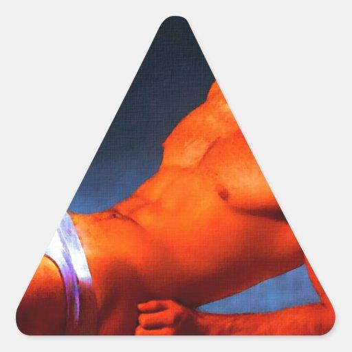 Burning del ABS - pintura original Calcomanías Trianguladas
