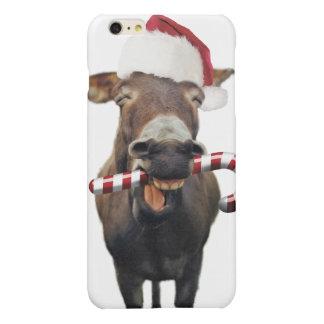 Burro del navidad - burro de santa - burro santa