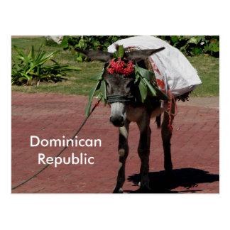 burro en la República Dominicana en una postal