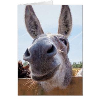 Burro sonriente con mueca tonta tarjeta de felicitación