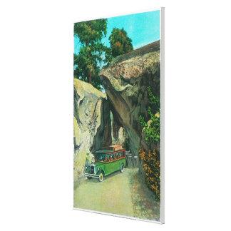 Bus turístico debajo de la roca del arco en el cam impresiones en lona