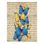 Butterrflies azules y amarillos postales