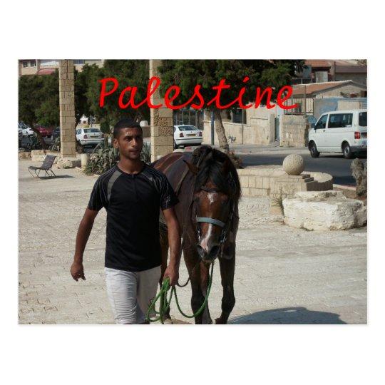 Caballero palestino postal