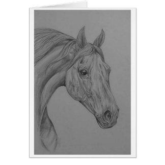 caballo árabe tarjeta de felicitación
