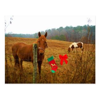 Caballo del navidad con el arco y la media postal