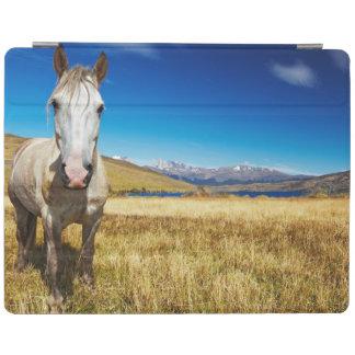 Caballo en el parque nacional de Torres del Paine, Cubierta De iPad