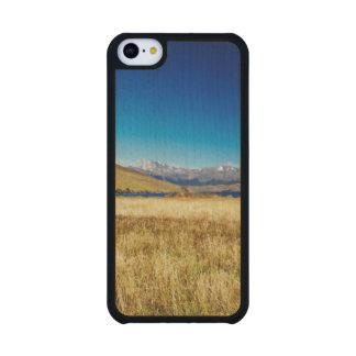 Caballo en el parque nacional de Torres del Paine, Funda De iPhone 5C Slim Arce