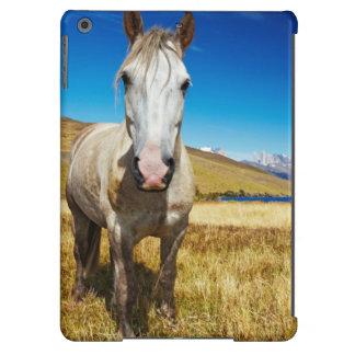 Caballo en el parque nacional de Torres del Paine, Funda Para iPad Air