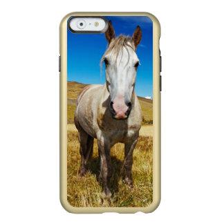 Caballo en el parque nacional de Torres del Paine, Funda Para iPhone 6 Plus Incipio Feather Shine