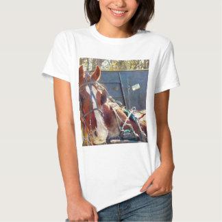 Caballo frío de Amish de la mañana Camisetas
