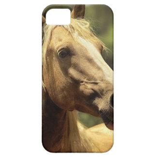 caballo funda para iPhone SE/5/5s