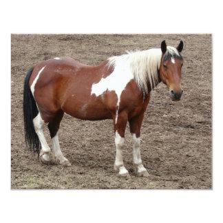 caballo anuncio