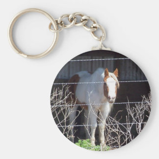 caballo llavero redondo tipo chapa