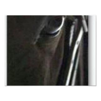 caballo negro invitación 10,8 x 13,9 cm